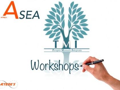 ASEA e TMI: diario di bordo